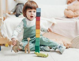 speelgoedtips peuter 2 jaar